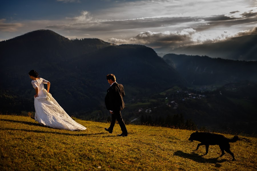 Wedding photographer Marius Barbulescu (mariusbarbulesc). Photo of 22.01.2015