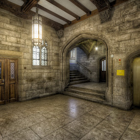Harry Potter's Hangout by Hamish Carpenter - Buildings & Architecture Architectural Detail ( interior, university, university of chicago, illinois, dungeon, library, harper's reading room, sci-fi, architecture, chicago, darkness )