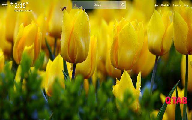 Yellow Flowers Wallpapers New Tab