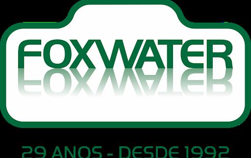 LOGO FOXWATER 29 ANOS