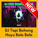 DJ Tapi Bohong Hayu Bale Bale Offline Mp3 icon