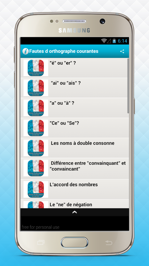 french common misspellings- screenshot