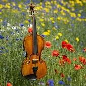 Beautiful Classical Music