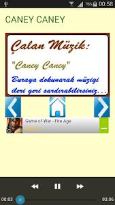 Halay Şarkıları ve Türküleri screenshot 3