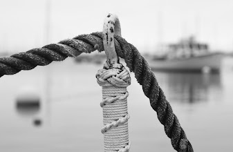 Photo: Morning dockside Rockport Harbor, ME Perhaps my favorite place in the world.  Shot for my #365project curated by +Simon Kitcher+Patricia dos Santos Patonand +Vesna Krnjic  And also shared with #MonochromeMonday +Hans Berendsen +Monochrome Monday by +Jerry Johnson +Charles Lupica +Steve Barge +Nurcan Azaz