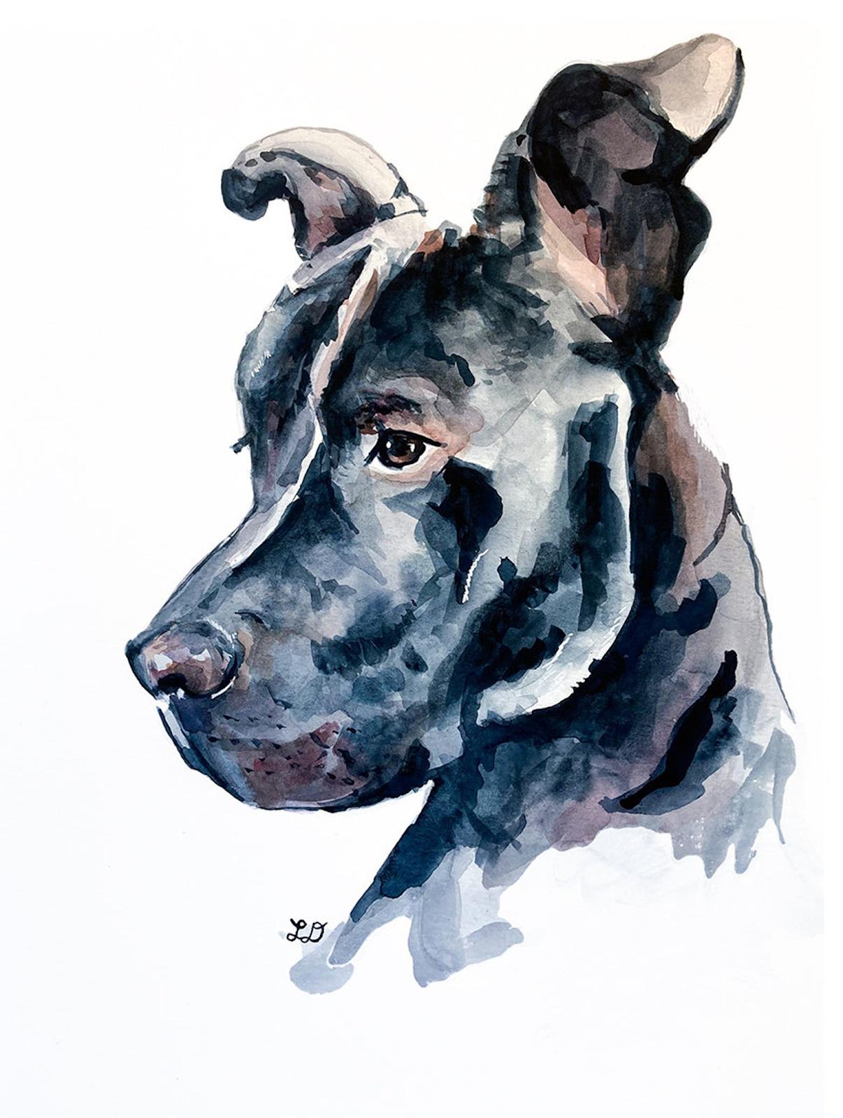 A watercolor portrait of a black Great Dane in profile