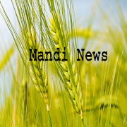 Mandi News