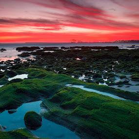 My beach by João Freire - Landscapes Sunsets & Sunrises ( sunset, alentejo, beach, portugal, landscape, rocks,  )