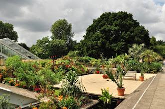 Photo: Exotische planten net voor Princess of Wales Conservatory -r Kew - Royal Botanical Gardens