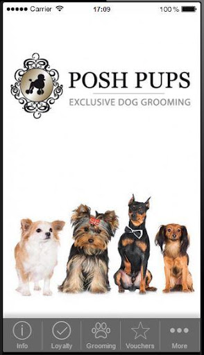 Posh Pups - Richmond