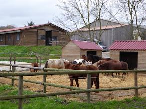 Photo: centre équestre Le Moulin Bourcier