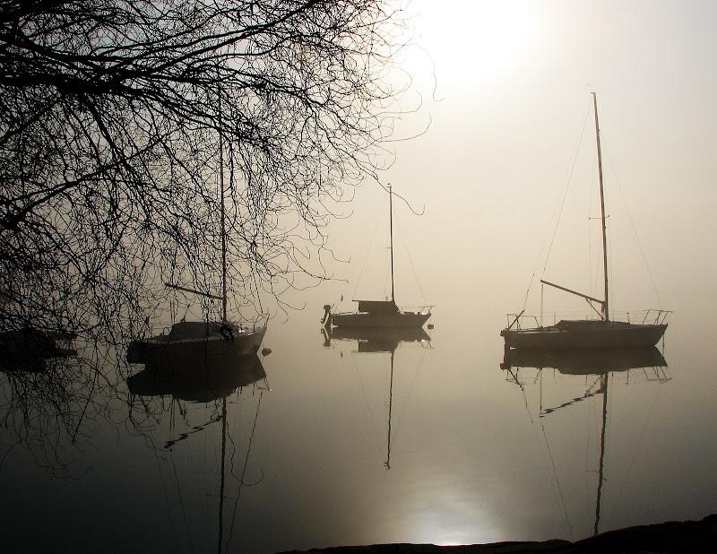 Quiete invernale di MicheleSpadafina