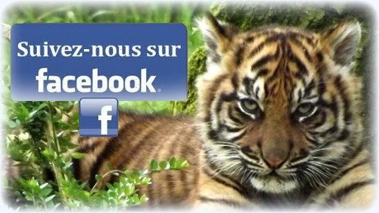Cliquez pour nous rejoindre et ne rien rater ! Groupe Facebook actif de plus de 5000 membres !