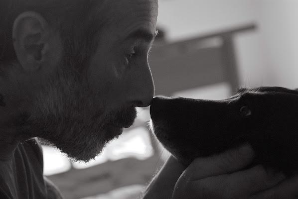 L'istante in cui l'uomo incontrò il cane di -Os-