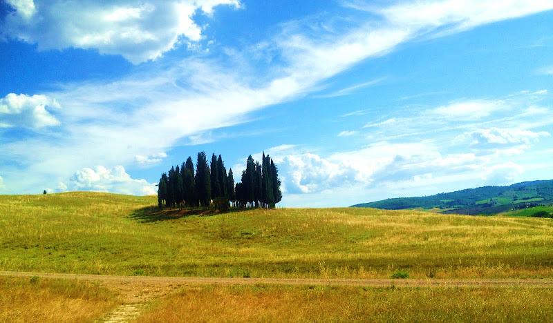Paesaggi estivi toscani di annabus58