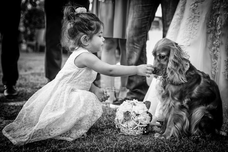 Wedding photographer Barbara Fabbri (fabbri). Photo of 05.04.2017