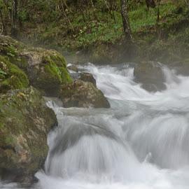 by Gigi Furtuna - Nature Up Close Natural Waterdrops