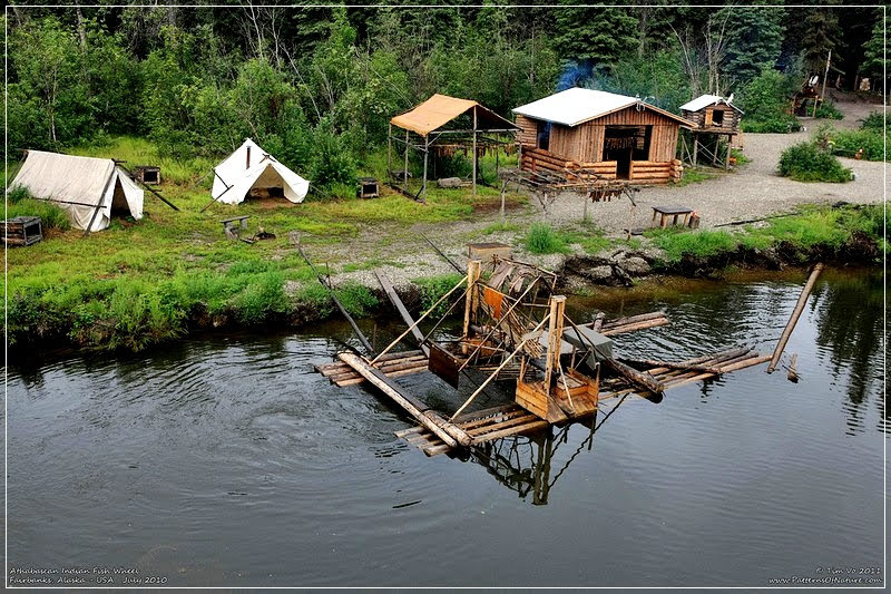 Rodas de peixes para capturar salmões