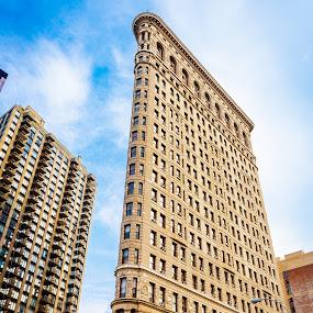 Flat Iron Building by Olga Gerik - Buildings & Architecture Public & Historical ( fueller building, new york )
