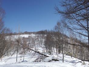 山頂手前の斜面