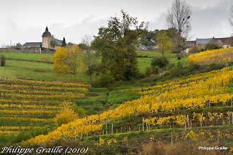 Photo: Vignes de la Chatrouille