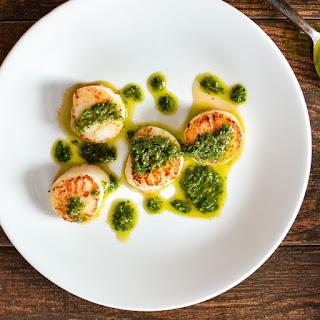 Pan-Seared Scallops with Arugula Pesto