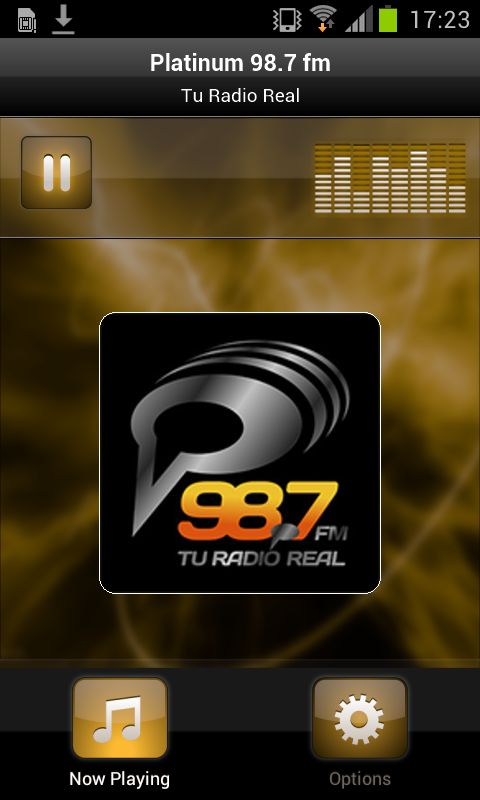 Platinum 98.7 fm- screenshot