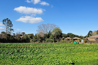 Photo: I would love to live in a farm.
