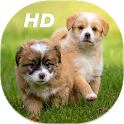 Cute Puppies Live Wallpapers HD icon
