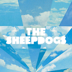 The Sheepdogs icon