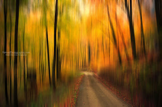 Photo: L'automne m'inspire et je me laisse faire ;-)  fallphotos #autumnphotography #naturephotography #photography #photoshop