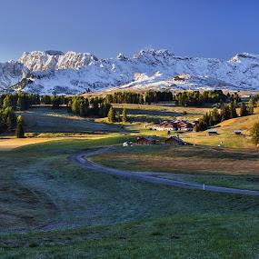 Alpe di Siussi by Miloš Stanko - Landscapes Mountains & Hills ( alpe di siussi, svítání, hory, dolomity, louky, stromy )