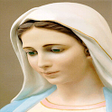 Virgin Mary Wallpaper icon