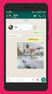 WhatsApp Fake - náhled
