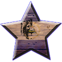 The Traveller icon