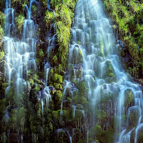 MOSSY FALLS by Jim Downey - Landscapes Waterscapes ( water, fall, long exposure, mossy, wet )