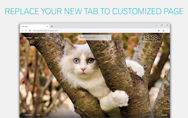 Cute Cats & Kittens Wallpaper HD Cat New Tab Themes