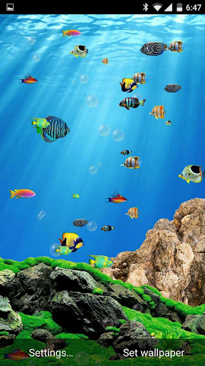 Aquarium Live Wallpaper Free 1.3 app download 2