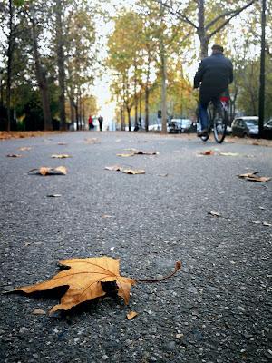 autunno melanconico di marco.tubiolo photography