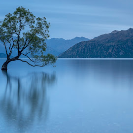Morning light by David Feuerhelm - Landscapes Waterscapes