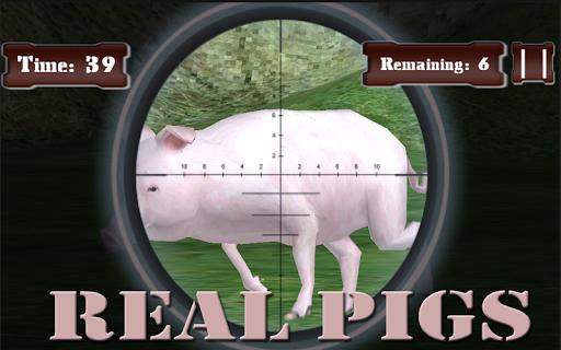 Wild Pig Hunt Free