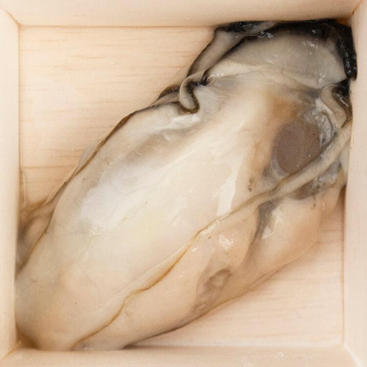 【廣島生蠔肉 × 1 顆】選用日本廣島牡蠣,品質好風味濃郁而不腥,肉身飽滿。已經去殼,在料理上更好處理。解凍後就可聞到的青草、甜瓜、小黃瓜的清新氣息,實在讓人食慾大開。