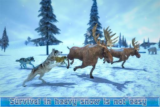 北极狼sim 3d
