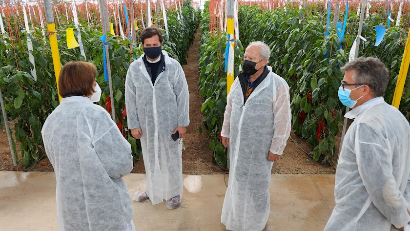 Rijk Zwaancuenta con más de 100 hectáreas de breeding y fincas de experimentación en Almería, El Ejido y Cartagena