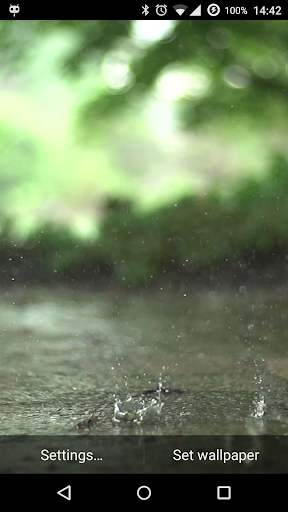 Real Rain Live Wallpaper