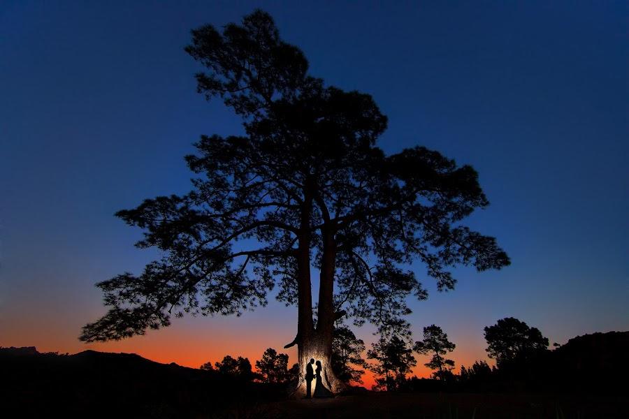Wedding photographer Pedro Cabrera (pedrocabrera). Photo of 16.08.2014