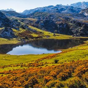 Lago Ercina by Jose María Gómez Brocos - Landscapes Mountains & Hills ( ercina, water, lago, agua, mountain, lake, montaña )