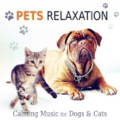 Pets Relaxation: Calming Music for Dogs & Cats, Gentle and Relaxing Songs to Calm Down Your Animal Companion
