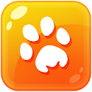 Animal Catch — New Age file APK Free for PC, smart TV Download