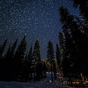 P1017 - Full of Stars - Full Size No Watermark.jpg